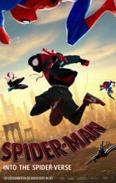 Spider-Man: Into The Spider-Verse (2D en 3D)